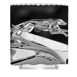 Greyhound Hood Ornament Shower Curtain