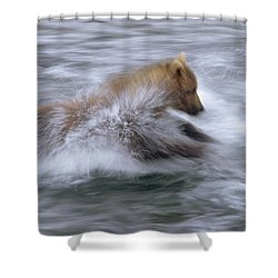 Grizzly Bear Chasing Fish Shower Curtain by Matthias Breiter