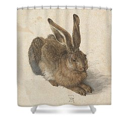 Young Hare Shower Curtain by Albrecht Durer
