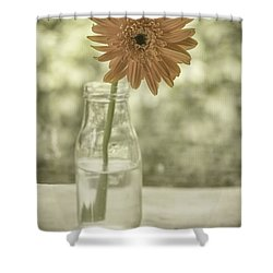 Happiness Shower Curtain by Kim Hojnacki