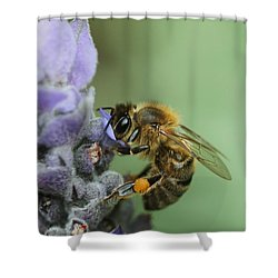 Happy Bee Shower Curtain by Joy Watson