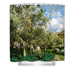 Shower Curtain featuring the photograph Harvest Day by Dany Lison