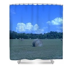 Haystacks Shower Curtain by Stacy C Bottoms