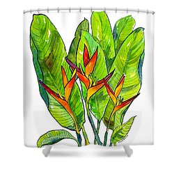 Heleconia Shower Curtain by Diane Thornton