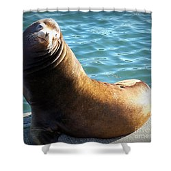 Hello Shower Curtain by Chalet Roome-Rigdon