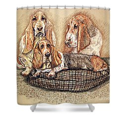 Hess'er Puppies Shower Curtain by Linda Simon