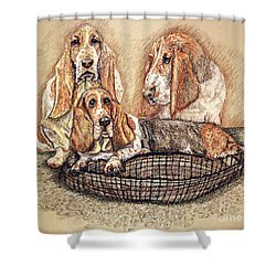 Hess'er Puppies Shower Curtain