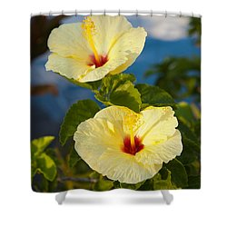Shower Curtain featuring the photograph Bright Yellow Hibiscus by Roselynne Broussard
