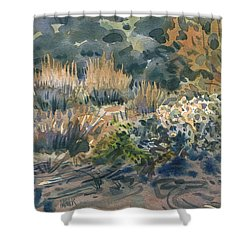 High Desert Flora Shower Curtain