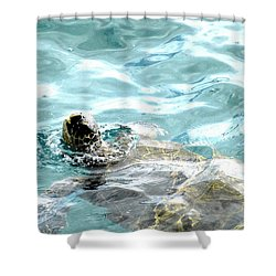 Kamakahonu, The Eye Of The Honu  Shower Curtain
