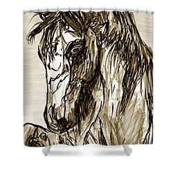 Horse Twins II Shower Curtain