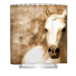 Horse Whisper Shower Curtain by Athena Mckinzie