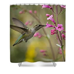 Hummingbird Heaven  Shower Curtain by Saija  Lehtonen
