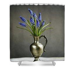 Hyacinth Still Life Shower Curtain by Nailia Schwarz