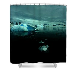 Shower Curtain featuring the photograph Icebergs by Amanda Stadther