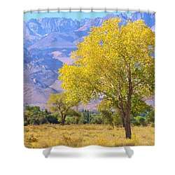 In All Its Glory Shower Curtain