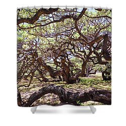 In The Depth Of Enchanting Forest Shower Curtain by Jenny Rainbow