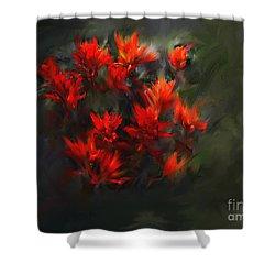 Indian Paintbrush Shower Curtain