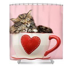 It Must Be Love Shower Curtain by Greg Cuddiford