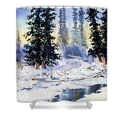 Jack Creek The Wrangells Shower Curtain