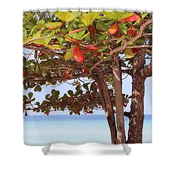 Jamaican Day Shower Curtain