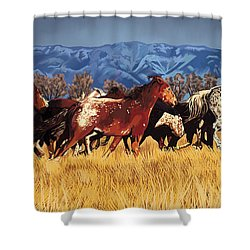 Shower Curtain featuring the painting Joe's Horses by Tim Gilliland