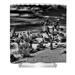 Shower Curtain featuring the photograph Joshua Tree Black And White by Benjamin Yeager