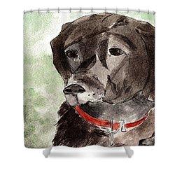Labrador Retriever Shower Curtain by Elizabeth Briggs