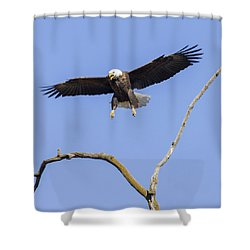 Landing Approach 1 Shower Curtain by David Lester