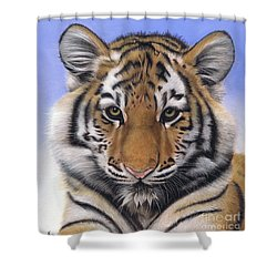 Little Big Cat Shower Curtain