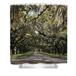 Live Oaks Shower Curtain