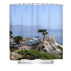 Shower Curtain featuring the photograph Lone Cypress by Bev Conover