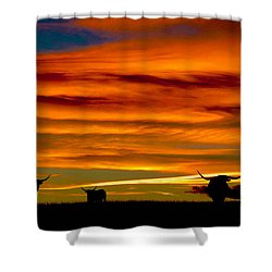 Longhorn Sunset Shower Curtain