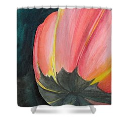 Shower Curtain featuring the painting Looking Up by Betty-Anne McDonald