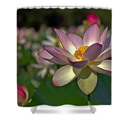 Shower Curtain featuring the photograph Lotus Flower by Jerry Gammon