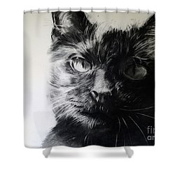 Love Shower Curtain by Valerie  Bruzzi