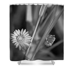 Loxahatchee Flower Shower Curtain by Bradley R Youngberg