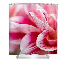 Macro Image Of A Pink Flower Shower Curtain by Nick  Biemans