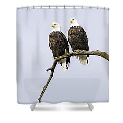 Majestic Beauty 2 Shower Curtain by David Lester