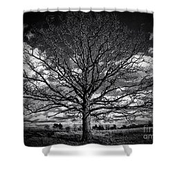 Marion Oaks Shower Curtain
