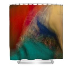 Mideastern Dancing Shower Curtain