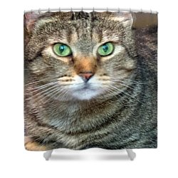 Missy 4  Shower Curtain