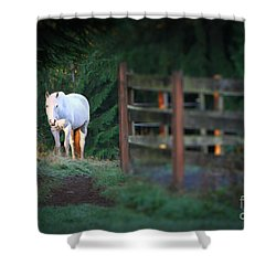Self Assurance Shower Curtain by Michelle Twohig