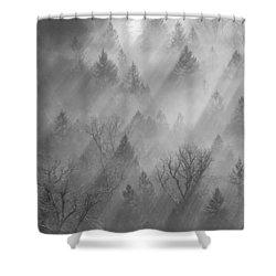 Morning Light -vertical Shower Curtain