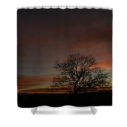 Morning Sky In Bosque Shower Curtain by James Gay