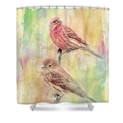 Mr And Mrs House Finch - Digital Paint Shower Curtain by Debbie Portwood