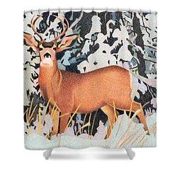 Mule Deer Shower Curtain by Dan Miller