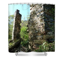 Shower Curtain featuring the photograph Nature's Door by Jane Ford