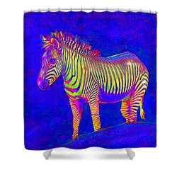Neon Zebra 2 Shower Curtain by Jane Schnetlage