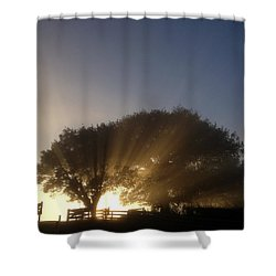 New Beginning Shower Curtain by Les Cunliffe